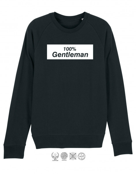 Men Sweater Gentleman